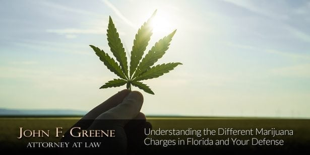 Understanding the Different Marijuana Charges in Florida and Your Defense