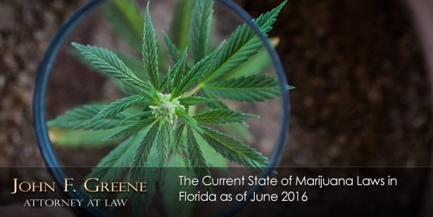 The Current State of Marijuana Laws in Florida as of June 2016